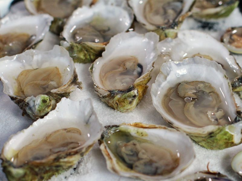 How to Shuck an Oyster|