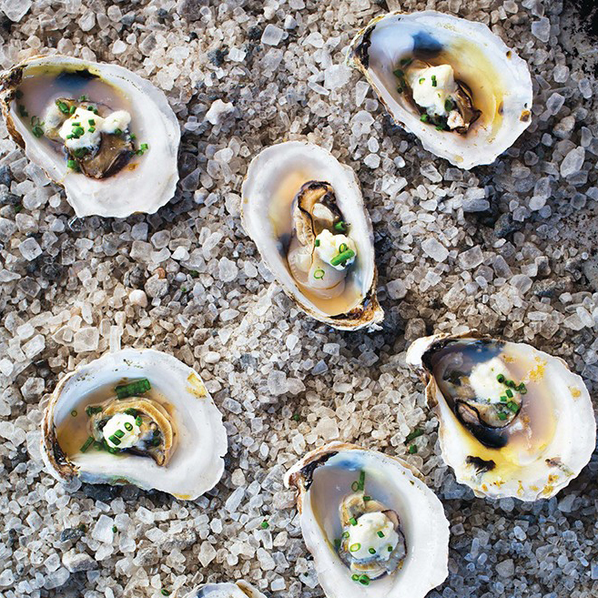 Roasted Oysters with Fresh Cheese