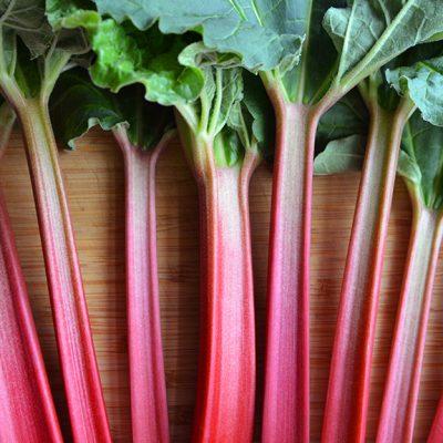 Rhubarb Spotlight|Rhubarb Crisp||||Rhubarb Spotlight||Hola Arepa|Sun Street Bread's Rhubarb Turnover|Honey-Rhubarb Ice Cream