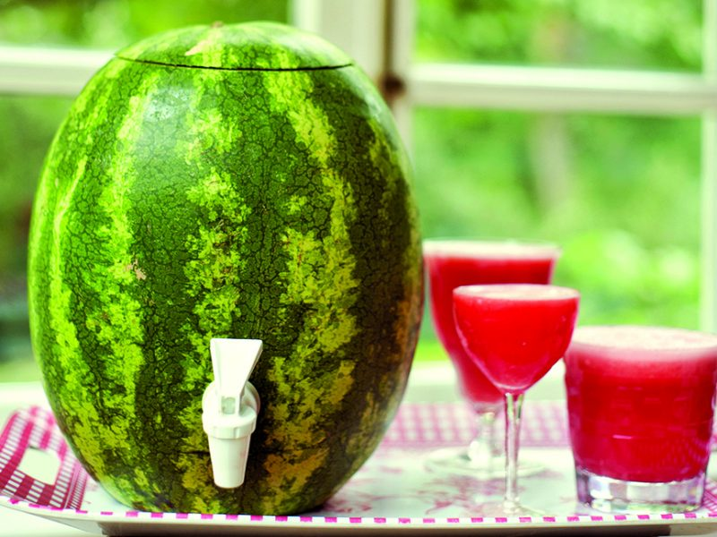 Watermelon Keg|Modern Pioneering|